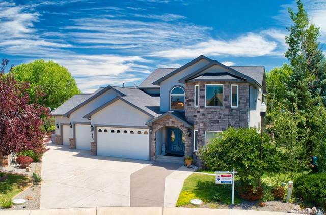 3927 Lone Tree Lane, Montrose, CO 81403 (#3422959) :: The DeGrood Team