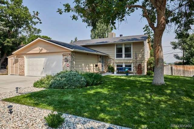 4203 W Radcliff Avenue, Denver, CO 80236 (MLS #3427336) :: 8z Real Estate