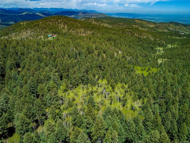 11714 Saddle Mountain Trail, Littleton, CO 80127 (#3448963) :: My Home Team