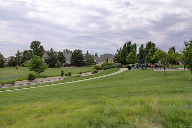 16799 Trail Sky Circle, Parker, CO 80134 (#3452450) :: HomePopper