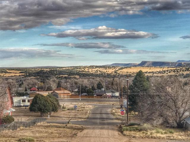 Tdb Stout Street, Walsenburg, CO 81089 (MLS #3484453) :: 8z Real Estate