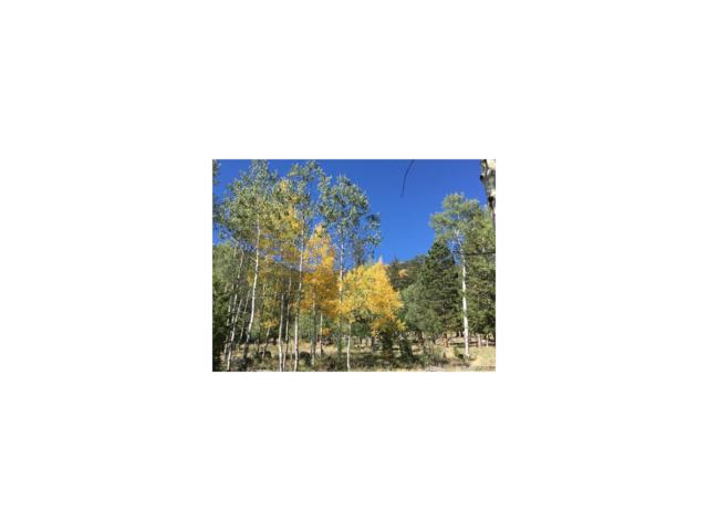 18863 & 11853 Monte Escondido Circle, Buena Vista, CO 81211 (#3497088) :: Wisdom Real Estate