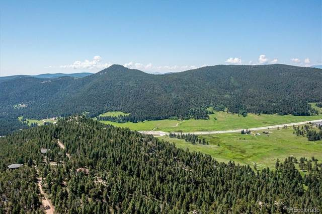 Majestic View Drive, Conifer, CO 80433 (#3502508) :: The HomeSmiths Team - Keller Williams