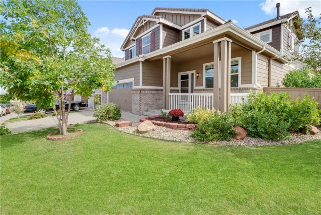 11042 Meadowvale Circle, Highlands Ranch, CO 80130 (#3523210) :: HomeSmart Realty Group