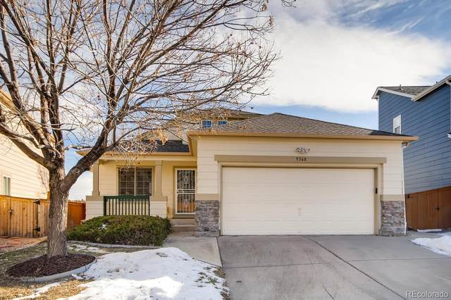 9568 Wangaratta Court, Highlands Ranch, CO 80130 (#3548673) :: HergGroup Denver