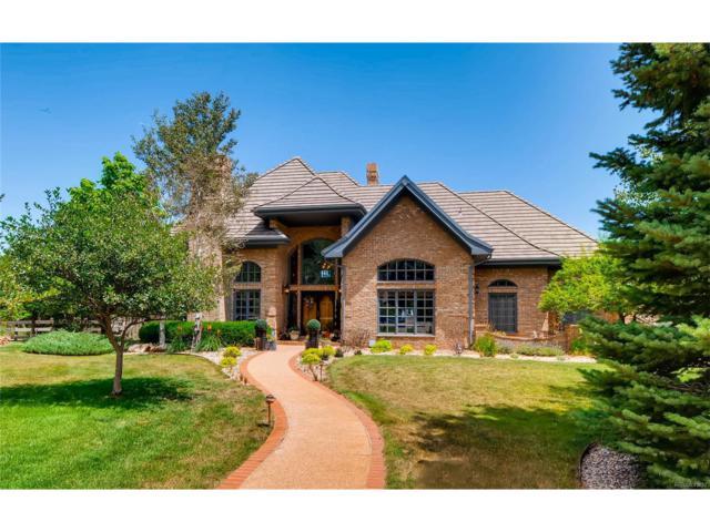 54 Golden Eagle Lane, Littleton, CO 80127 (MLS #3570481) :: 8z Real Estate