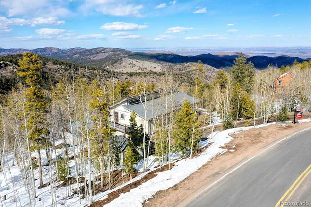 10131 City View Drive, Morrison, CO 80465 (#3575397) :: Berkshire Hathaway Elevated Living Real Estate