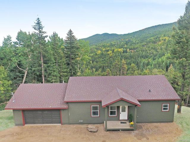 1031 Lodgepole Drive, Evergreen, CO 80439 (#3608834) :: Structure CO Group