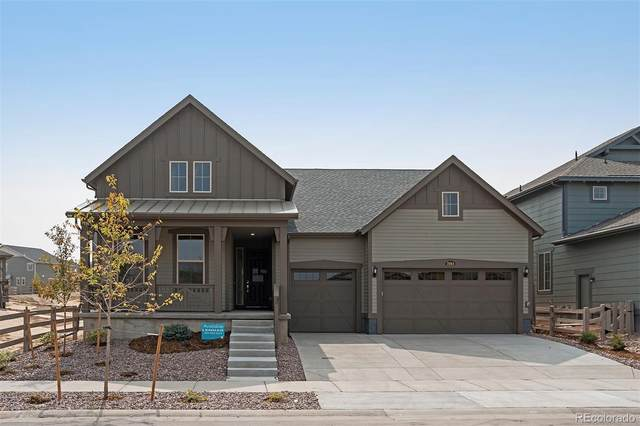 7884 Blue River Avenue, Littleton, CO 80125 (#3616122) :: The Margolis Team