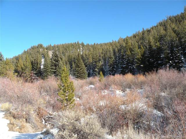 16417 Eleventh Hour, Twin Lakes, CO 81251 (#3638973) :: Briggs American Properties