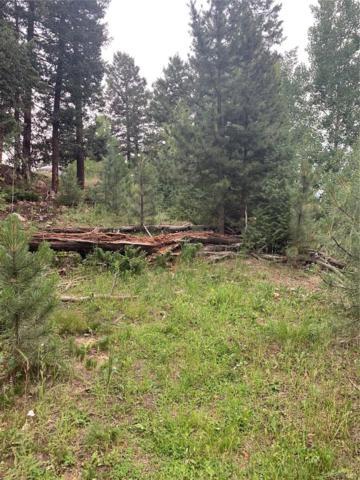 11698 Nichols Way, Conifer, CO 80433 (MLS #3646817) :: 8z Real Estate