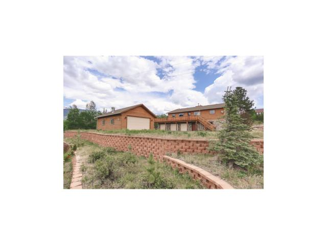 81 Gold Flake Terrace, Bailey, CO 80421 (MLS #3649164) :: 8z Real Estate