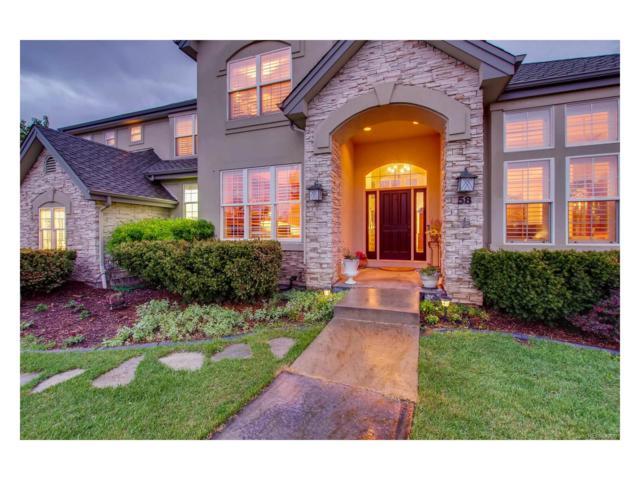 58 Blue Heron Drive, Thornton, CO 80241 (MLS #3649188) :: 8z Real Estate