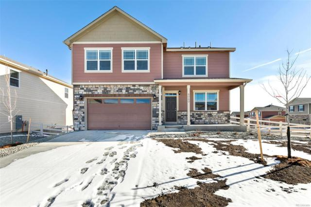 6060 Point Rider Circle, Castle Rock, CO 80104 (#3651874) :: The HomeSmiths Team - Keller Williams
