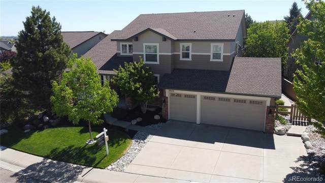 10670 Addison Court, Highlands Ranch, CO 80126 (#3656997) :: The DeGrood Team