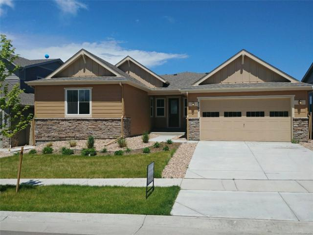 7169 W Warren Avenue, Lakewood, CO 80227 (#3670461) :: Structure CO Group