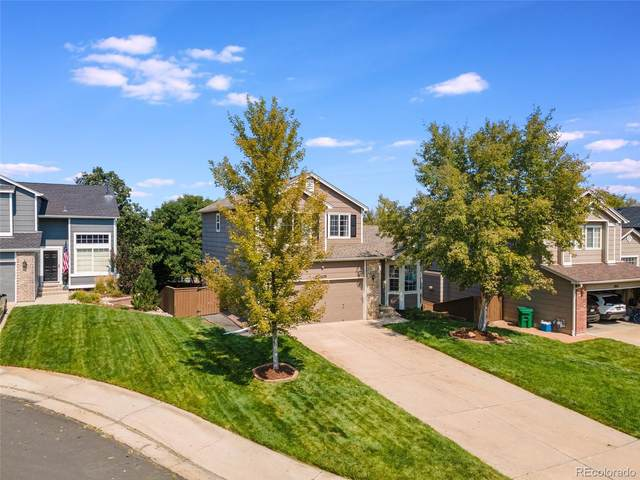 2629 Cove Creek Court, Highlands Ranch, CO 80129 (#3673574) :: The Colorado Foothills Team | Berkshire Hathaway Elevated Living Real Estate