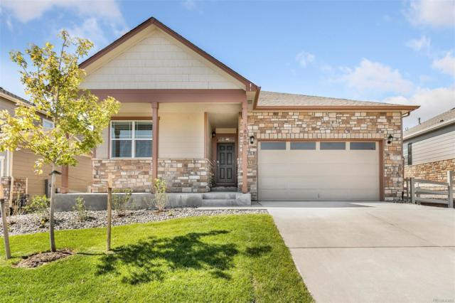 1850 Shadow Creek Drive, Castle Rock, CO 80104 (#3679711) :: The HomeSmiths Team - Keller Williams