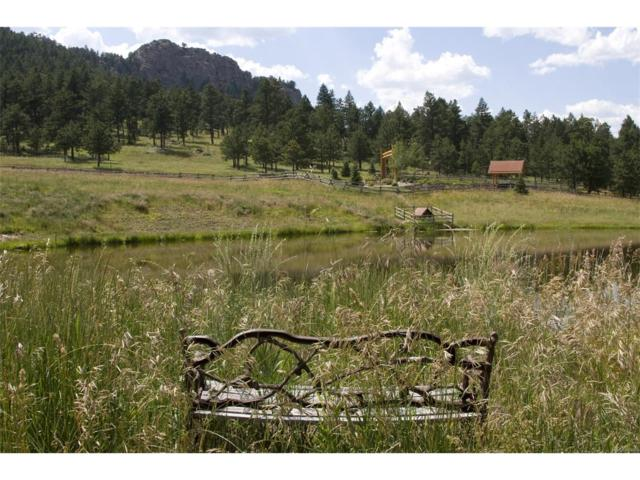 6413 Little Cub Creek Road, Evergreen, CO 80439 (MLS #3688808) :: Bliss Realty Group