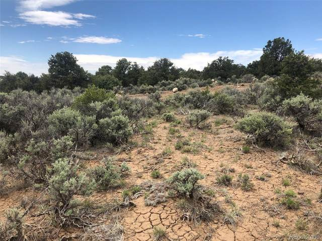 Whm Sec G Blk 95A Lot 18 Vista Trail, San Luis, CO 81152 (MLS #3719881) :: Bliss Realty Group