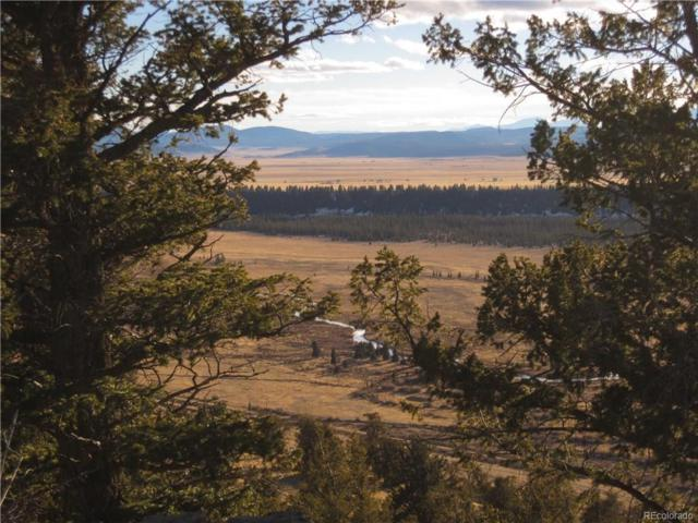 Lot 197 Middle Fork Vista, Fairplay, CO 80440 (#3758555) :: The Peak Properties Group