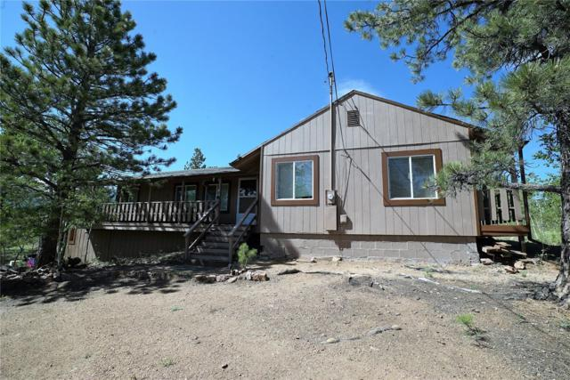 103 Road P67, Bailey, CO 80421 (#3764569) :: The Pete Cook Home Group