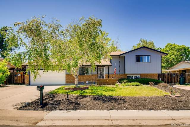 13173 Acres Green Drive, Littleton, CO 80124 (#3770754) :: Re/Max Structure