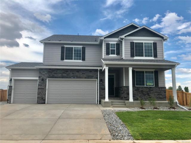 6282 Yellowtail Street, Timnath, CO 80547 (MLS #3772346) :: 8z Real Estate
