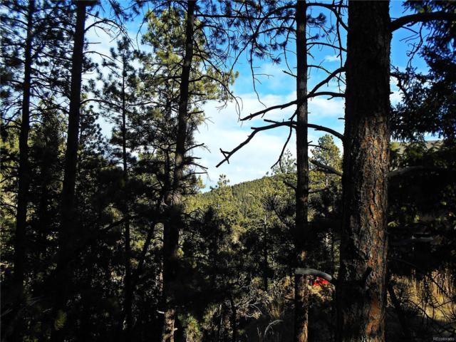 3004 Piney Ridge Road, Evergreen, CO 80439 (MLS #3812561) :: 8z Real Estate