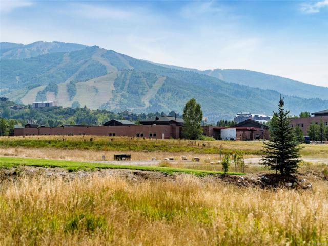 833 Twilight Lane, Steamboat Springs, CO 80487 (MLS #3815360) :: 8z Real Estate