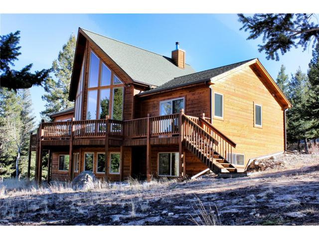 30293 San Isabel Road, Buena Vista, CO 81211 (#3830780) :: Wisdom Real Estate