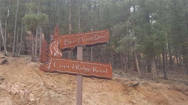 17049 Blue Heron Drive, Pine, CO 80470 (MLS #3832235) :: 8z Real Estate