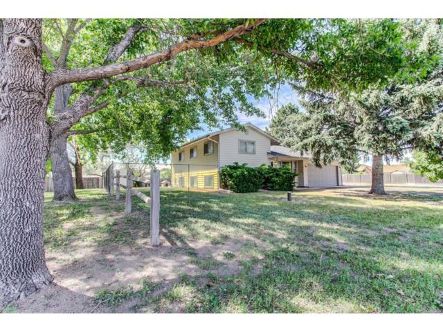 4201 Date Street, Colorado Springs, CO 80917 (MLS #3842396) :: 8z Real Estate