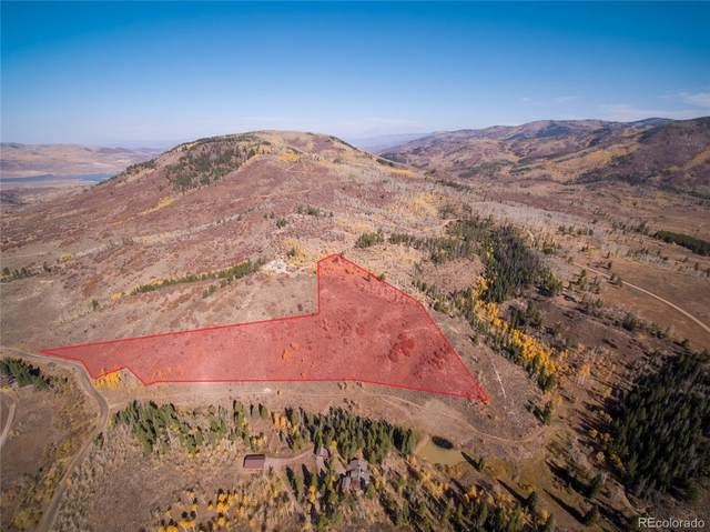 21920 County Road 16, Oak Creek, CO 80467 (#3847464) :: Venterra Real Estate LLC