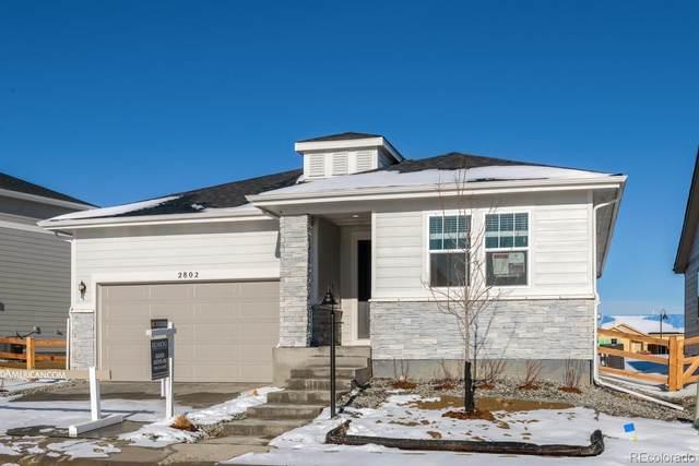 2802 Sand Beach Lk Drive, Loveland, CO 80538 (MLS #3880818) :: 8z Real Estate