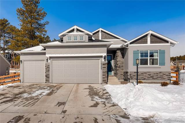 16386 Shadow Cat Place, Monument, CO 80132 (#3896938) :: The Healey Group