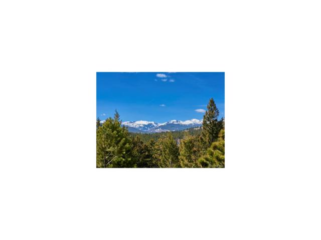 Coal Creek Canyon Drive, Nederland, CO 80406 (#3899120) :: The DeGrood Team