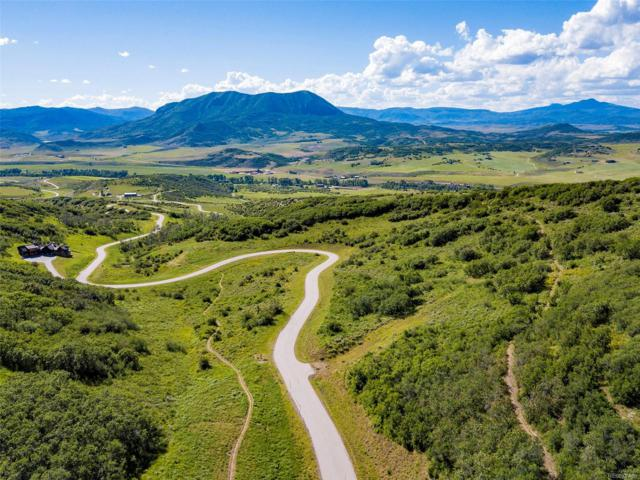 27225 Cowboy Up Road, Steamboat Springs, CO 80487 (#3901593) :: 5281 Exclusive Homes Realty