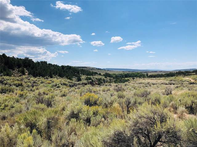 4284 Stratton Rd, Fort Garland, CO 81133 (MLS #3909083) :: 8z Real Estate