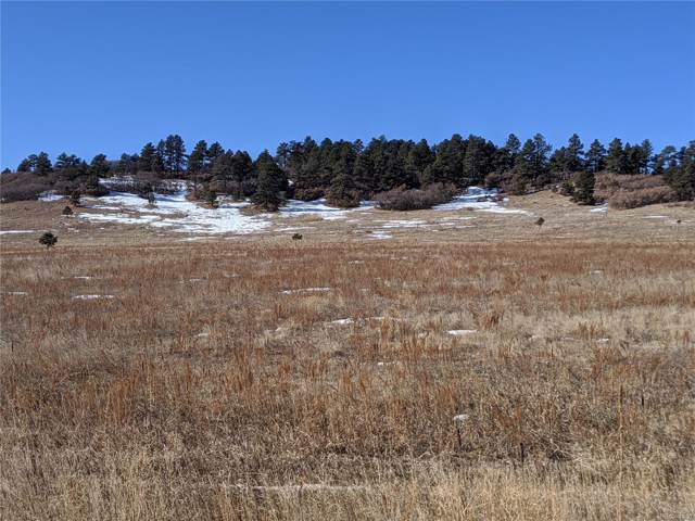 N E Cherry Creek Road, Larkspur, CO 80118 (#3961239) :: The DeGrood Team
