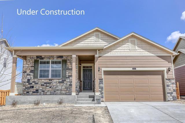 316 Central Avenue, Severance, CO 80550 (MLS #3986244) :: 8z Real Estate