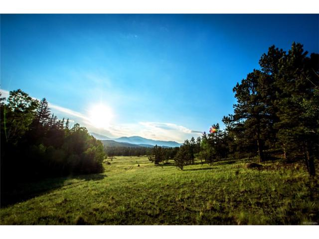 Us 285, South Of Pine Junction Highway, Bailey, CO 80433 (MLS #3996979) :: 8z Real Estate