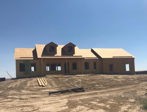 58707 E 44th Drive, Strasburg, CO 80136 (#4014650) :: The Pete Cook Home Group