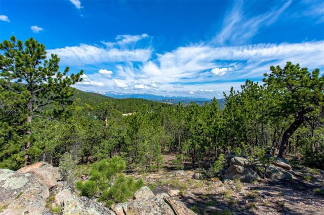 93 Gross Dam Road, Golden, CO 80403 (#4025038) :: The Heyl Group at Keller Williams