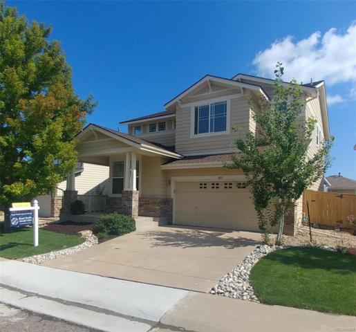 3073 Braeburn Place, Highlands Ranch, CO 80126 (#4025269) :: The Peak Properties Group