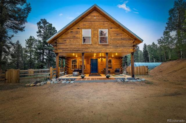 1245 Blossom Road, Woodland Park, CO 80863 (#4025815) :: The DeGrood Team
