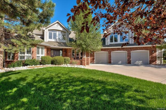 57 Falcon Hills Drive, Highlands Ranch, CO 80126 (#4055477) :: The DeGrood Team
