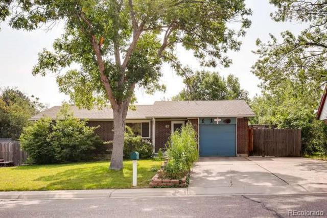 730 Beech Street, Lakewood, CO 80401 (#4059184) :: Bring Home Denver