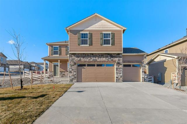 2049 Shadow Rider Circle, Castle Rock, CO 80104 (#4079111) :: The HomeSmiths Team - Keller Williams