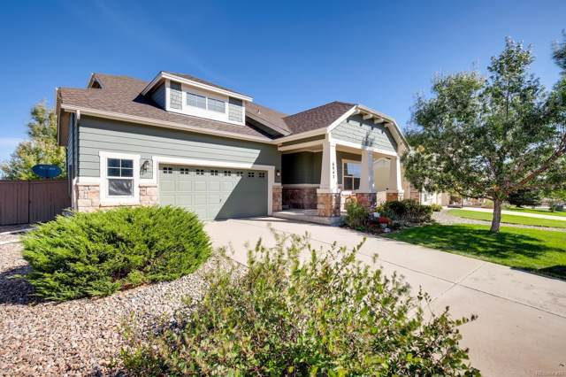 6947 Turnstone Avenue, Castle Rock, CO 80104 (#4087615) :: Wisdom Real Estate